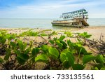 boat crashes in the sea.... | Shutterstock . vector #733135561