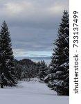 mountain landscape | Shutterstock . vector #733137499
