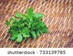 Fresh Grow Bunch Green Organic...