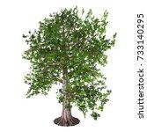 oak tree 3d illustration   the... | Shutterstock . vector #733140295