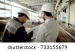 back view of foreman and... | Shutterstock . vector #733155679