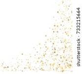 gold glitter stars corners... | Shutterstock .eps vector #733215664