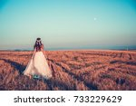 bride in wedding dress goes on... | Shutterstock . vector #733229629