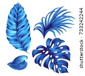 set of vector tropical leaves.  | Shutterstock .eps vector #733242244