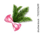 realistic fir branch with a...