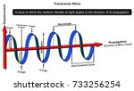 transverse wave infographic...   Shutterstock . vector #733256254
