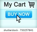 buy now internet button. led... | Shutterstock . vector #733257841