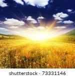 beautiful sunset over field... | Shutterstock . vector #73331146