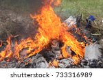close up burn waste fire flame... | Shutterstock . vector #733316989