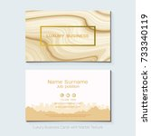 luxury business cards vector... | Shutterstock .eps vector #733340119