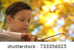 young guy playing the violin in ... | Shutterstock . vector #733356025