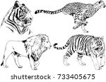 set of vector drawings on the... | Shutterstock .eps vector #733405675