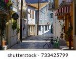 lefkada  greece   october 1 ... | Shutterstock . vector #733425799