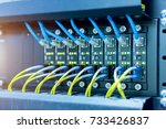 network switch and ethernet... | Shutterstock . vector #733426837