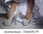 wedding photography detail... | Shutterstock . vector #733439179