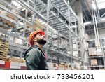 wholesale  logistic  people and ... | Shutterstock . vector #733456201