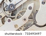 details of a pocket watch from... | Shutterstock . vector #733493497