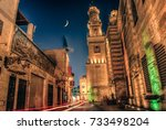 cairo  egypt   september 2011   ... | Shutterstock . vector #733498204