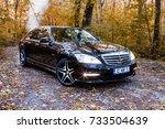 chisinau  moldova  october 11 ... | Shutterstock . vector #733504639