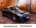 chisinau  moldova  october 11 ... | Shutterstock . vector #733504651
