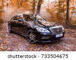 chisinau  moldova  october 11 ... | Shutterstock . vector #733504675