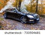 chisinau  moldova  october 11 ... | Shutterstock . vector #733504681