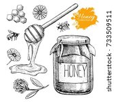 honey set. vintage hand drawn... | Shutterstock . vector #733509511