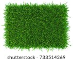 grass background texture. fresh ... | Shutterstock . vector #733514269