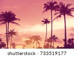 copy space of silhouette... | Shutterstock . vector #733519177
