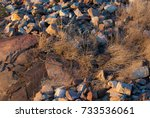stones thrown on the ground ... | Shutterstock . vector #733536061