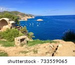 view of the beautiful shore of... | Shutterstock . vector #733559065