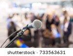 Microphone In Focus Against...