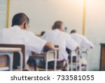 blurred asian rural students... | Shutterstock . vector #733581055