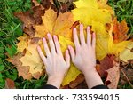 young adult woman hands with...   Shutterstock . vector #733594015