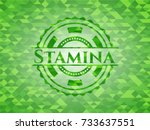 stamina green emblem with... | Shutterstock .eps vector #733637551