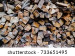 preparation of firewood for the ... | Shutterstock . vector #733651495