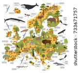 european flora and fauna map... | Shutterstock .eps vector #733671757