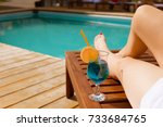 relaxing woman near luxury... | Shutterstock . vector #733684765