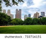 central park in nyc   ... | Shutterstock . vector #733716151