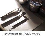 basic tools for dental... | Shutterstock . vector #733779799