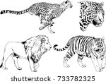 set of vector drawings on the... | Shutterstock .eps vector #733782325