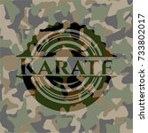 karate on camouflage pattern | Shutterstock .eps vector #733802017