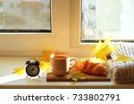 godd autumn morning.... | Shutterstock . vector #733802791
