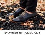 woman legs in black shoes...   Shutterstock . vector #733807375