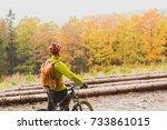 mountain biker looking at... | Shutterstock . vector #733861015