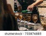 bartender making alcoholic...   Shutterstock . vector #733876885