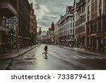 riga  latvia october 9. 2017... | Shutterstock . vector #733879411