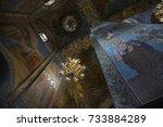 saint petersburg  russia  may...   Shutterstock . vector #733884289