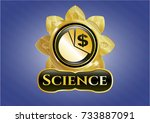 golden emblem with chart icon... | Shutterstock .eps vector #733887091