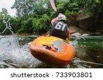 kayaking in india | Shutterstock . vector #733903801